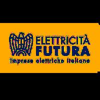 Elettricità futura 300×300 TRASP